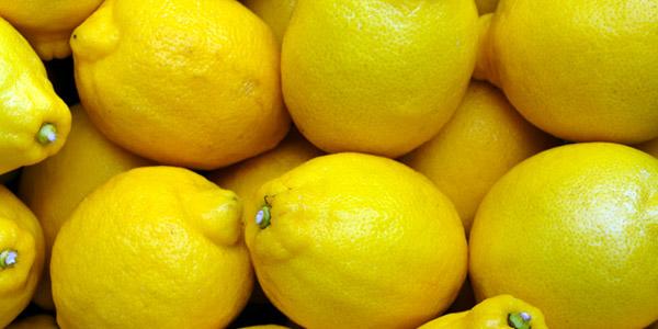 Die Zitronen des Gardasees